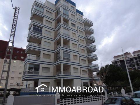 Bel appartement sur la plage de Gandia 350 mètres de la mer et à quelques mètres de l'université, des entreprises et des commerces. Il est un premier étage. 100 m2, se compose de 4 chambres avec placards, 2 salles de bains, salon avec ventilateurs de...