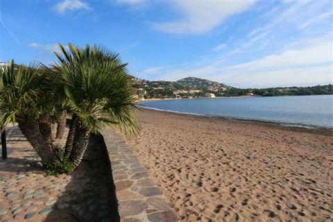 Situé près de l'une des plus belles plages de la Méditerranée, à 150 m des plages , dans une résidence de 3 ha avec une piscine olympique cet appartement T.3 de 76 m2 possède une terrasse au sud-ouest de 22 m2 . Très bonne valeur locative . Investiss...