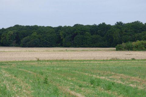 ORLEANS campagne, Wood land 1260000 m²