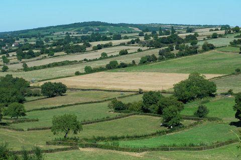 Vous découvrirez cette petite maison mitoyenne bourguignonne dans un petit hameau. Elle se situe au calme, au bout d'une impasse, dans une vallée et est entourée de bois, de prairies et de vignobles. Vous pourrez y faire de magnifiques promenades à p...