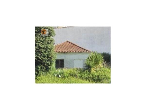 Petite villa en terrain avec 1 200 m2 à côté de l'hôpital Agostino Ribeiro. Pour plus d'informations ou visitez annexe, pf contact sous-le-maisons autour du soleil, Lda