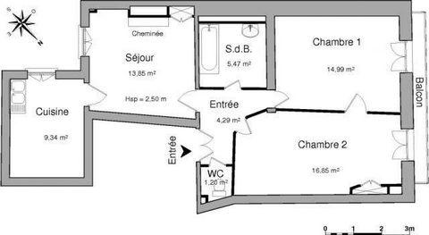 au coeur des rues piétonnes, dans petit immeuble, appartement rénové avec gout, hall, cuisine, séjour, salon, deux chambres, salle de bains, wc, balcon.