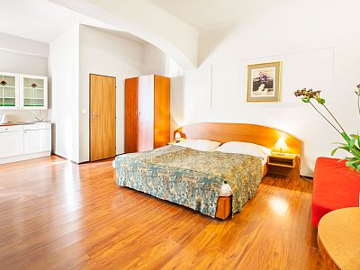 This beautiful studio has an ideal location in a quiet, residential neighborhood Zizkov with an unforgettable atmosphere. Wenceslas Square and the shopping street Na Prikopech are only a few minutes away by public transport. Rates: nightly-weekend - ...