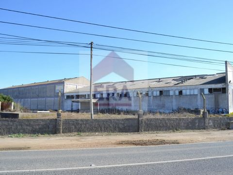 5,370 m2 building. In the basement with storage. Ground freezing and canning factory. 1st floor with Office. Inserted into ground with several rustic plots, totaling 39,750 m2. Well located. Area with excellent access. Energy Rating: Exempt #ref:1501...