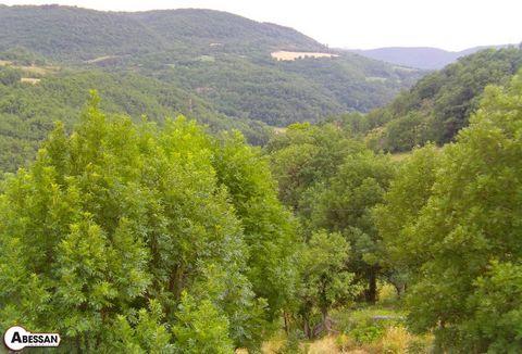 AVEYRON (12) VAILHAUZY à vendre maison en pierre située sur une colline exposée sud avec une très belle vue sur la vallée. Composée d'un séjour cuisine de 46 m², 5 chambres, d'un jardin de 1222 m² avec sa source. Une terrasse exposée sud vous permett...