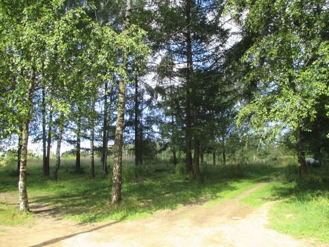Ярославское шоссе, 59 км от МКАД, г.Сергиев Посад, р-н Семхоз, продается земельный участок 18 соток Участок ровный, сухой, по форме близок к прямоугольнику 51 х 35 метров. На участке растут большие деревья (лиственницы и березы). Участок находится в ...