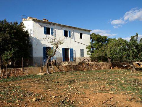A 6 kilometros de Bunyola y 10 kilometros de Santa Maria del Cami. Encontramos esta casa de campo a la venta. La finca rustica con una superficie de terreno de unos 70.000 m2 dispone de casa principal con una superficie construida de unos 359 m2 divi...