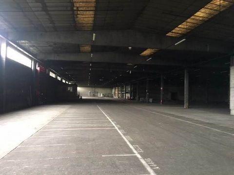 A Louer, Bâtiment Industriel d'une superficie d'environ 12 590 m², possibilité de loyer en plus du Terrain environ 24 ares de disponibles. Attention le bâtiment est actuellement loué, il sera de nouveau disponible au 01/09/2018. Ce bien vous est prop...