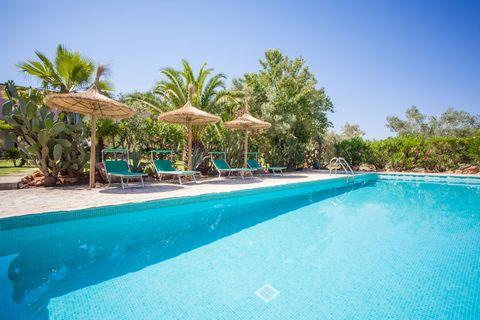 Casa para dos personas en medio de la naturaleza con piscina compartida dentro de una possessió mallorquina en Costitx. La piscina se encuentra a 90 metros de la casa. Es de uso compartido, de cloro, y mide 12 x 4 metros, con una profundidad de 1.6 m...