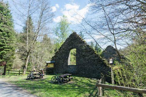 Cette ancienne ferme ardennaise entièrement restaurée vous accueille en pleine nature dans une propriété de 10 ha, à l'orée du bois. Le gite est composé de 4 appartements, d'un grand salon, une grande salle à manger , une cuisine équipée professionne...