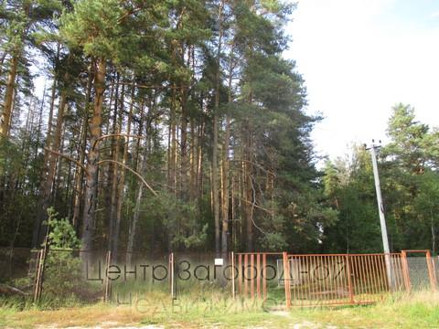 Фряновское шоссе, 43 км от МКАД, д.Протасово, продается ухоженный участок 11,9 соток в газифицированном садовом товариществе Участок ровный, сухой, размеры 30 х 40 метров. На участке садовые и декоративные посадки, газон, автостоянка. Участок угловой...