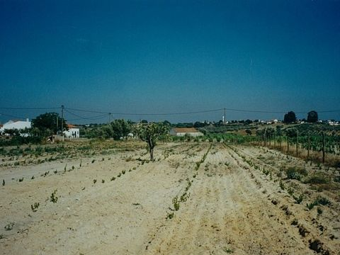 This Monte Alentejano comprises 15,000m2 of farmland with a variety of fruit trees and vines. It would be possible to expand the vineyard and farm sheep and goats. The land has outline planning permission for construction of a building of 800m2 and ...